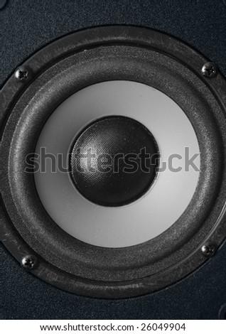 Speaker closeup