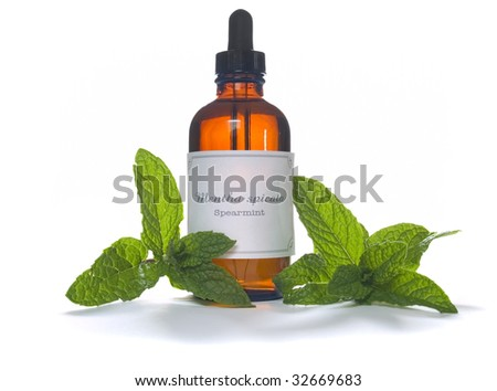 Spearmint leaves with extraction or essential oil in eyedropper bottle - Mentha spicata