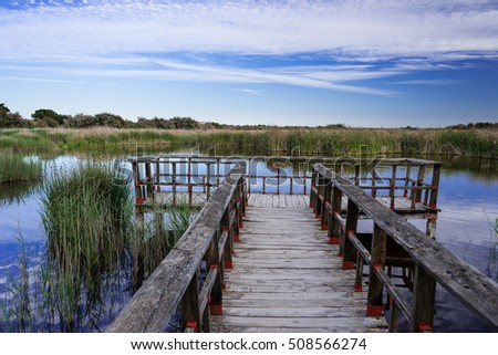 Shutterstock Special lights in the Tablas de Daimiel National Park, Ciudad Real, Spain