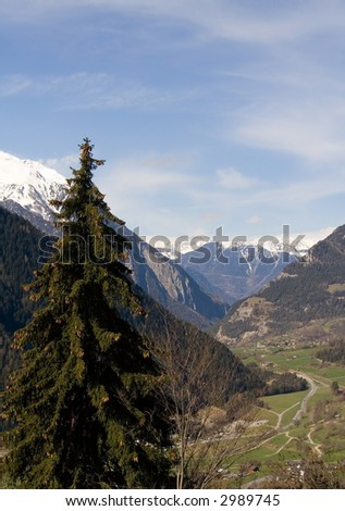 Special Swiss landscape, fields and snowy mountains