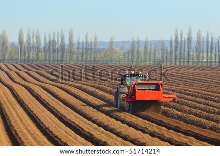 specialist agricultural machinery preparing the soil for sowing carrots against a backdrop of poplar trees and blue sky in springtime
