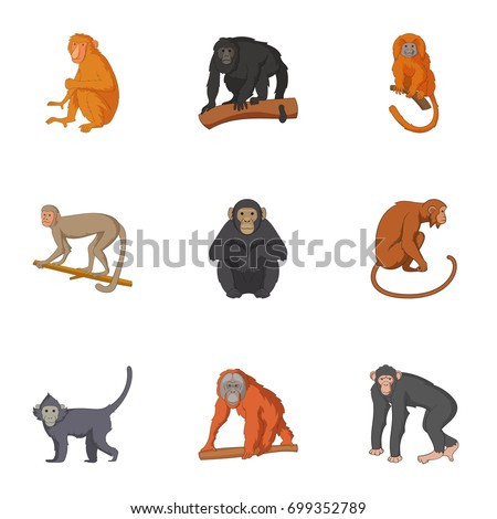 Species of chimpanzee icons set. Cartoon set of 9 species of chimpanzee  icons for web isolated on white background