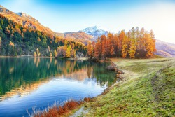 Spectacular autumn view of Champfer lake. Mirror reflaction in lake. Location: Silvaplana, Maloya district, Engadine region, Grisons canton, Switzerland, Europe.