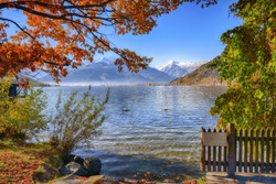 Spectacular autumn view of lake and trees in city park of Sell Am See. Fantastic sunny day over lake with swan. Location:  Zell am See, Salzburger Land, Austria, Europe