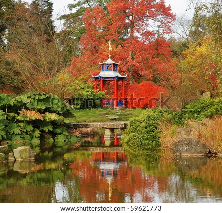 Spectacular colored maples in a japanese style garden with for Japanese style pond