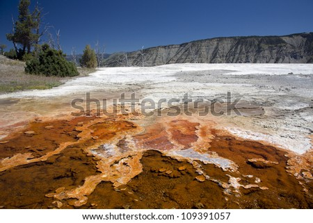 Spectacular colorful landscape in Mammoth Hot Springs, Yellowstone National Park, Montana, USA