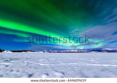 Spectacular display of intense Northern Lights or Aurora borealis or polar lights forming green swirls over frozen Lake Laberge, Yukon Territory, Canada winter landscape #644609659