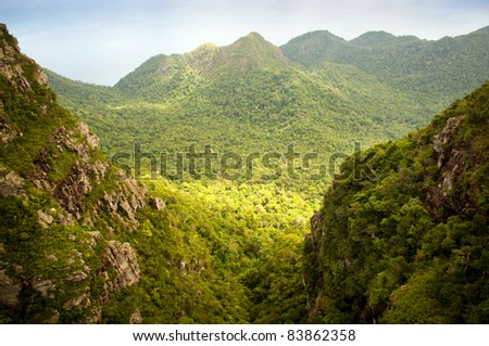 Spectacular forest landscape with mountain range