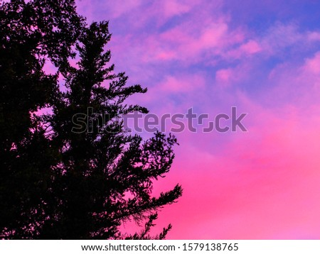 Spectacular sky colors and skyline