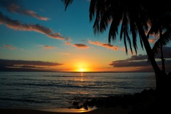 Spectacular sunset in Maui, Hawaii. Colorfull view with palms and pacific ocean. Small and isolated island Maui. The best place for holidays and relax.