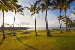 Spectacular, tropical island golf course hole in dramatic early morning light. The green is ringed by palm trees and a sand trap.