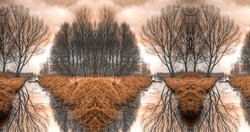 specular rower in a swamp, trees reflection in water. Panoramic landscape. Monochromatic amber brown color. Run a rowing boat  to the unknown without knowing what we can expect after the next bend.