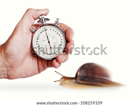 Speedy snail. Concept image with stopwatch and snail