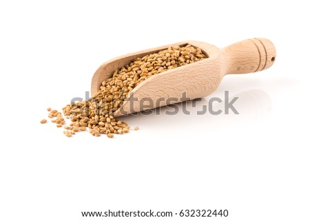 Spelt grain (dinkel wheat) in wooden scoop isolated on white background #632322440