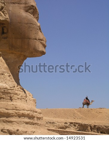 Sphinx and camel with rider, Egypt.