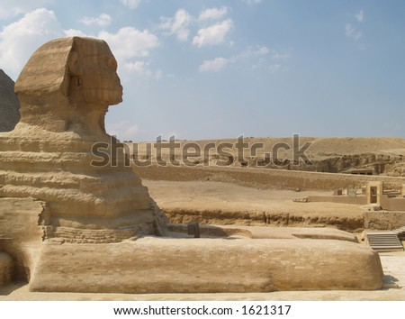 Sphinx in Egypt at the pyramids