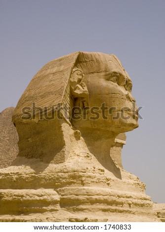 Sphynx egypt