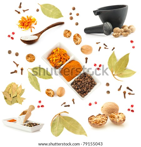 Spice and herbs set. Big collection of different spices for cooking on white background