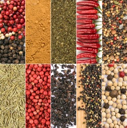 Spice Collage. Various Pepper Corns Collection, Different Seasoning Mix, Dry Spicy Assortment