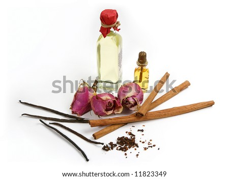 spices and flowers for aroma oil isolated on white background