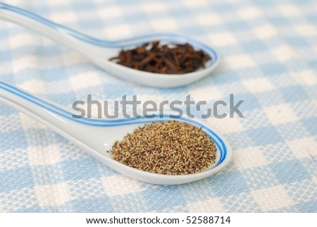 Spices and seasoning as food ingredients for cooking. Concepts such as food and beverage, healthy eating, and diet and nutrition.