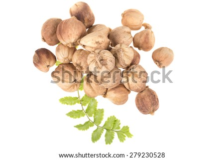 Spices Cardamom.  isolated on white background closeup  #279230528