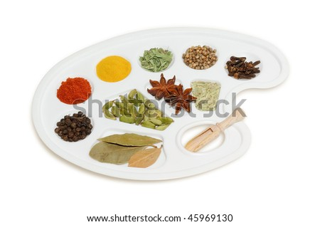 Spices Collection. Spices and kitchen herbs on the palette isolated on white.