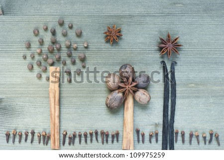spices for desserts and cookies, cakes, biscuits, wooden table background, top view
