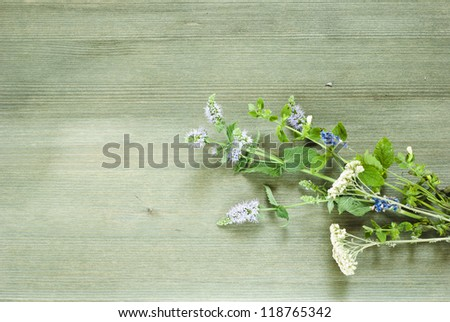 spices, herbal plants on wooden table , top view