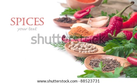 spices in the spoons on white background