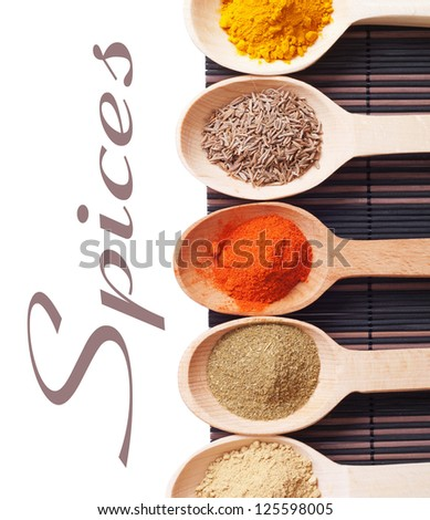 Spices Isolated on White Background with sample text - stock photo