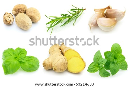 Spices on a white background