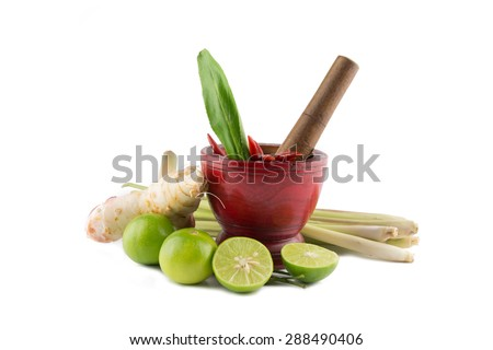 Spices  with Mortar and Pestle isolated on white background / Thai Spicy Foods