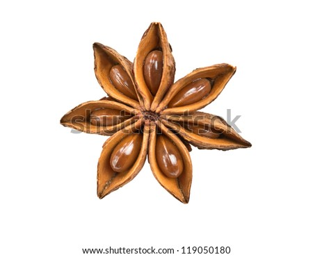 spicy seasoning - star anise isolated on white background