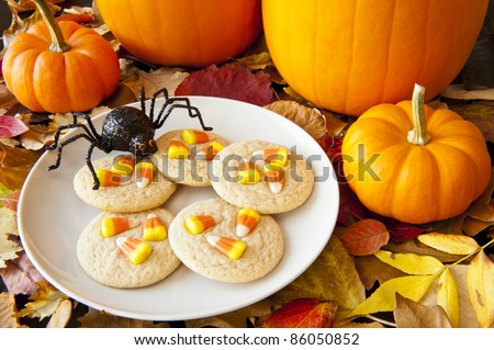 Spider ready to snack on a plate of cookies decorated with candy corns