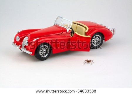 Spider stepping down from car toy