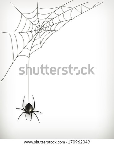 Spider web, bitmap copy #170962049