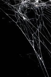spider web,halloween background