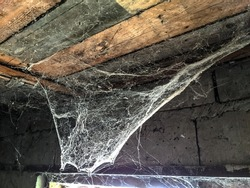 Spider web hit the roof light. Old rustic barn. background - copy space.