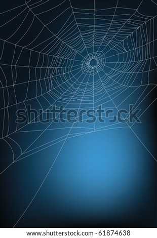 spider web illustration with copy space