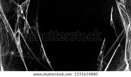 Spiderwebs isolated on black grunge background. Cobweb in the corner.  Halloween party. Texture of spider web. Horror, scary Halloween decoration. Gothic style