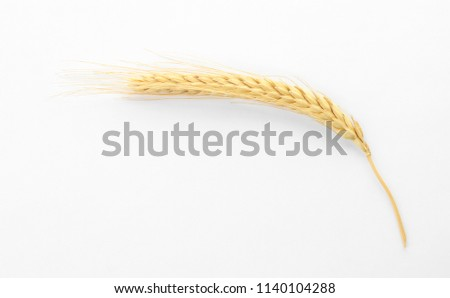 Spikelet on white background. Healthy grains and cereals #1140104288