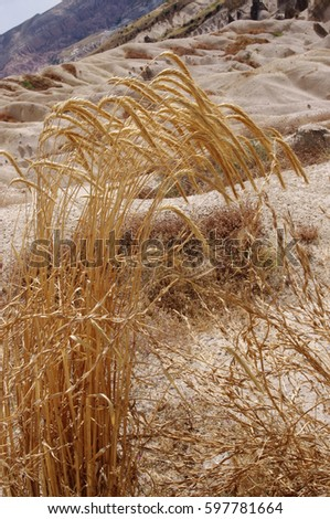 Spikelets and rock formations in Cappadocia, Turkey #597781664