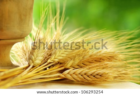 Spikes of wheat and cup
