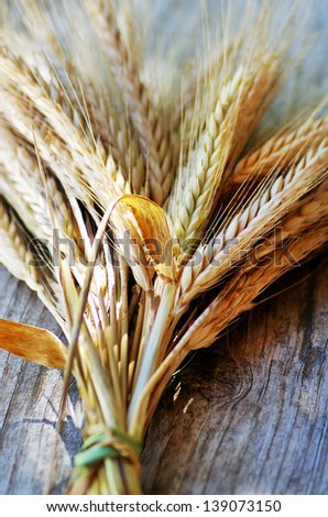 Spikes of Wheat on the Wood Background