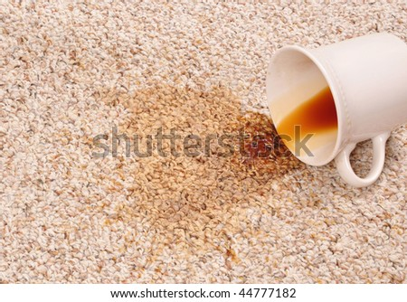 Spilled coffee on the carpet - stock photo