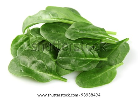 Spinach in closeup
