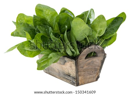 Spinach Leaves isolated on white background #150341609
