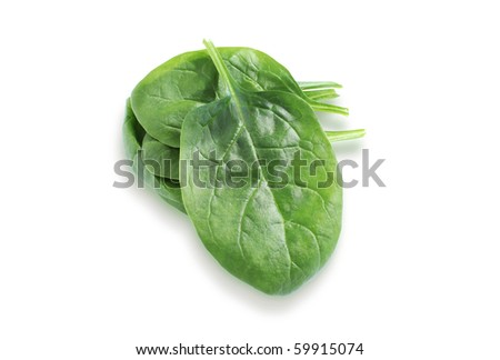 spinach leaves on a white background