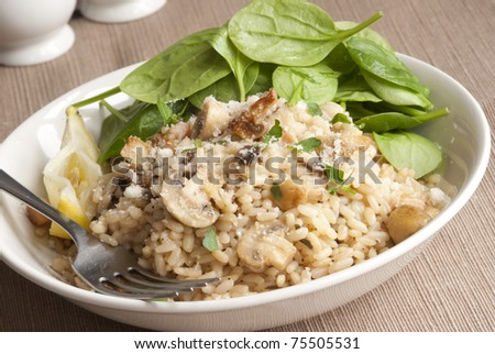 Spinach, mushroom and lemon pilaf in a bowl - stock photo